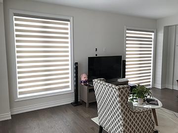 Zebra-shades