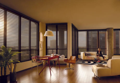 Modern window covering